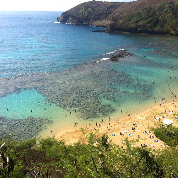 [하와이 현지투어] 오아후섬 1일 관광 투어(진주만) 이미지
