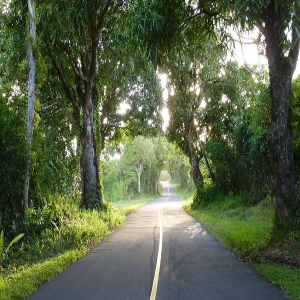 [하와이 현지투어] 카우아이 1일 관광투어 이미지