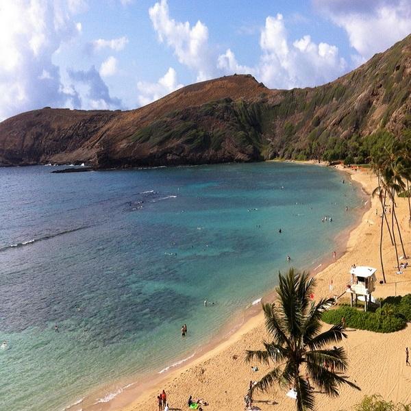 [하와이 현지투어] A.하나우마베이 이미지