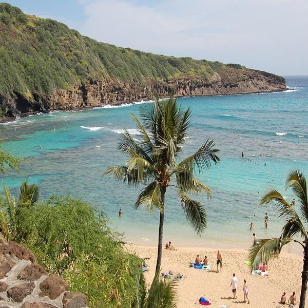 [하와이 현지투어] B.하나우마베이 이미지