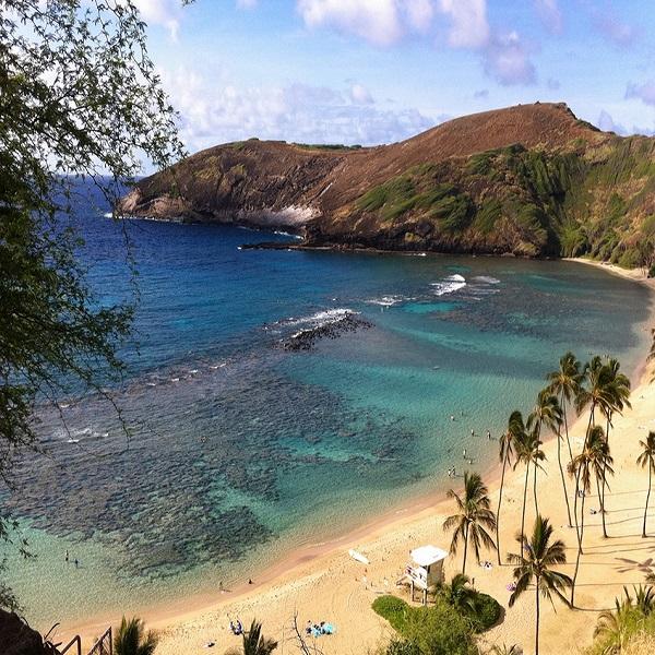 [하와이 현지투어] C.하나우마베이 이미지