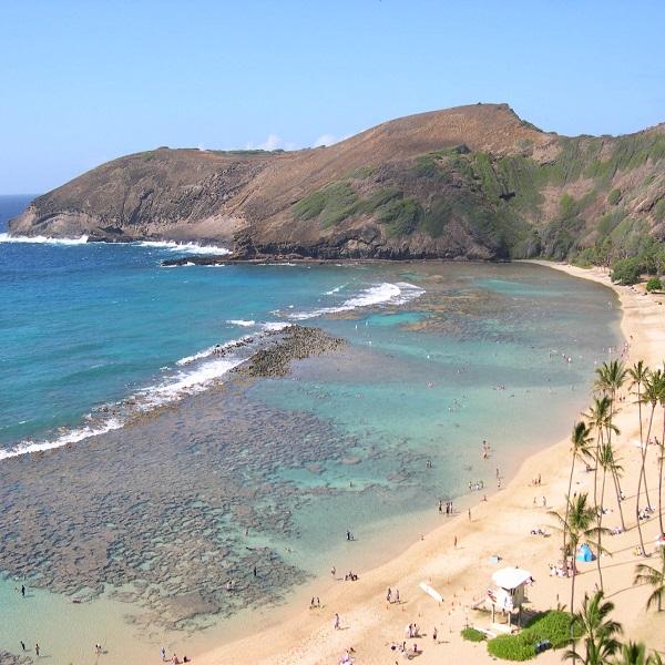 [하와이 현지투어] 하나우마베이 스노클링(리무진) 이미지