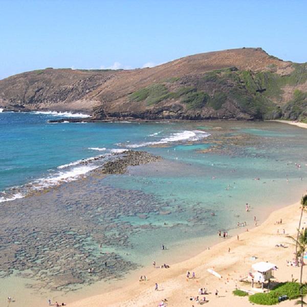 [하와이 현지투어] 하나우마베이+와이켈레아울렛 콤보 이미지