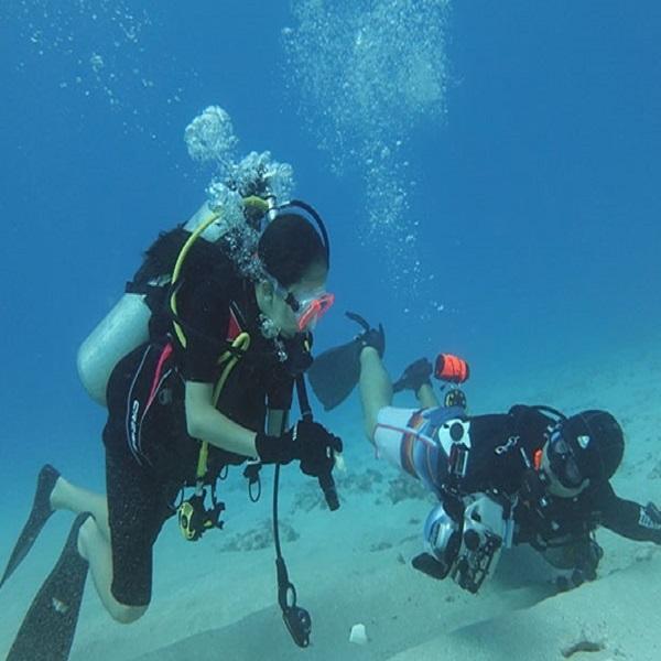 [하와이 현지투어] 스쿠버 다이빙 1탱크 이미지