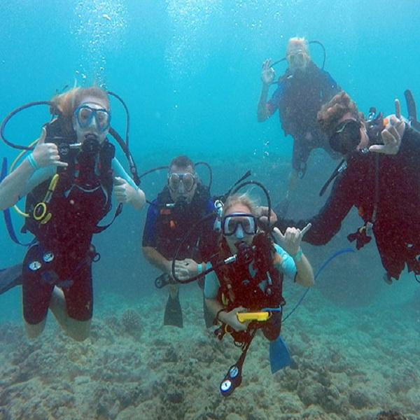 [하와이 현지투어] 스쿠버 다이빙 2탱크 이미지