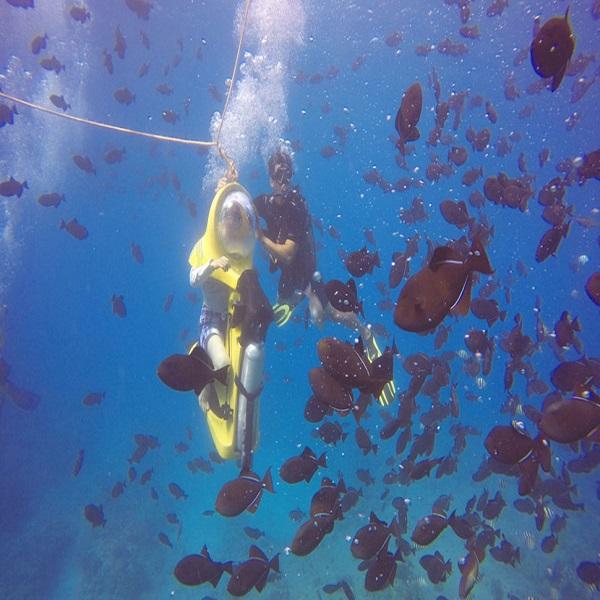 [하와이 현지투어] 수중스쿠터 이미지