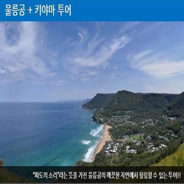 [시드니 현지투어] 시드니 울릉공+키야마 투어 이미지