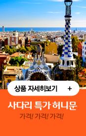사다리 특가 허니문 상품 자세히 보기. 가격! 가격! 가격!