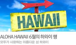 모두의 여행지 하와이