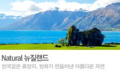 뉴질랜드 통합 기획전