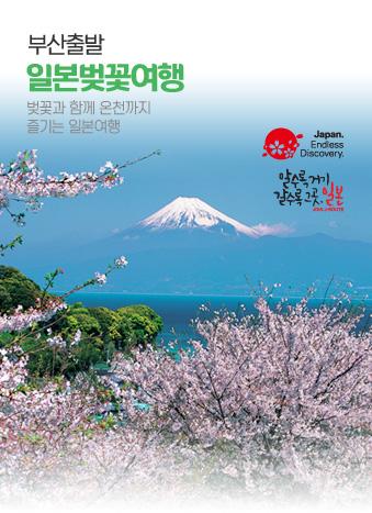 부산출발 일본벚꽃여행
