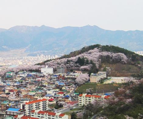 장복산공원 이미지