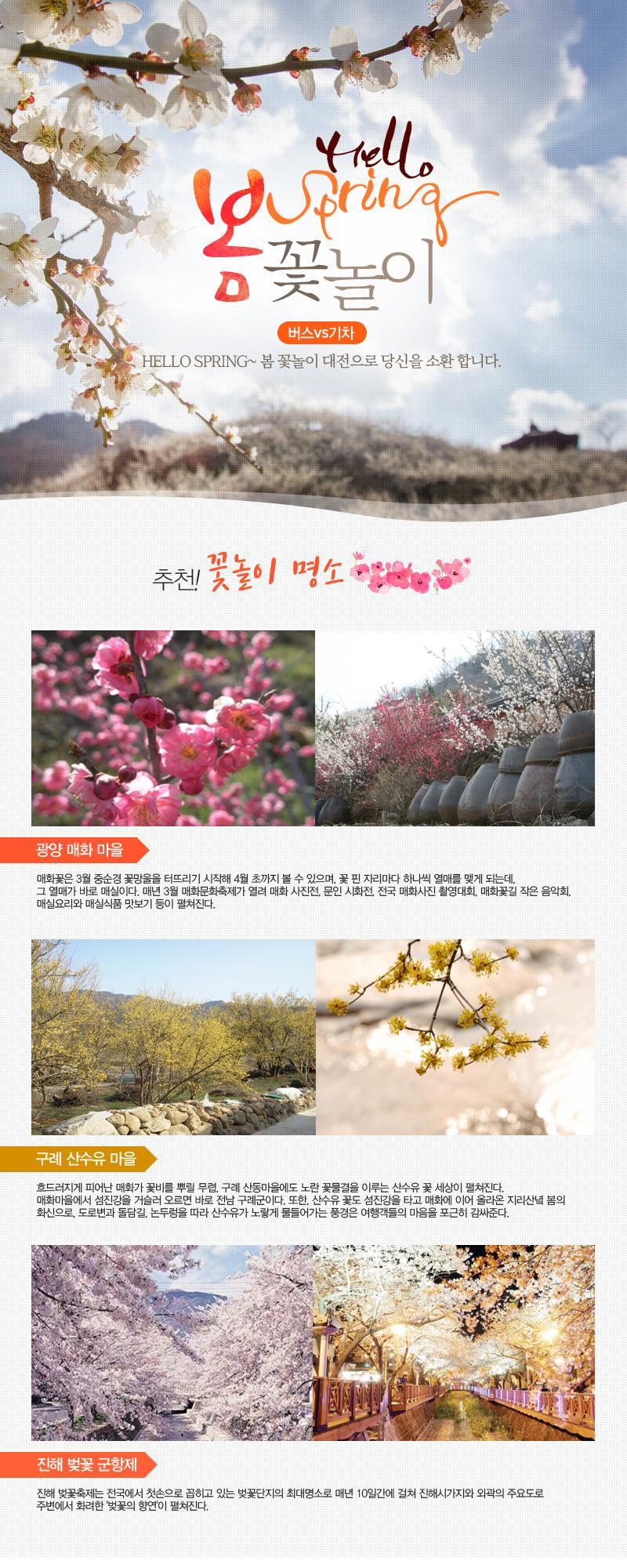 봄꽃놀이 대전