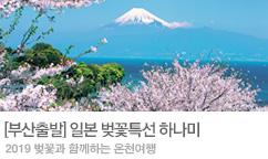 부산출발 일본 벚꽃