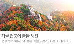 가을,단풍에 물들 시간